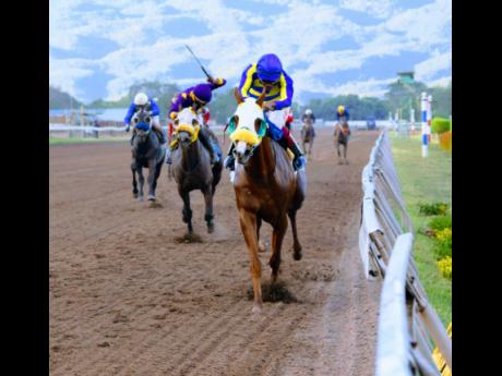 OneOfAKind (front), with Anthony Thomas aboard, at Caymanas Park on Saturday, March 13.